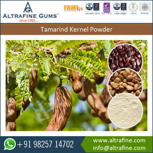 Carbohydrates and Protein Rich Deoiled Tamarind Kernel Powder for Food Industry