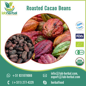 Natural High Quality Cocoa Plant Extracted Roasted Cacao Beans