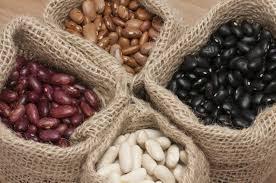 Organic Red Kidney Beans/Light Red Kidney Bean/Dark Red Kidney Beans