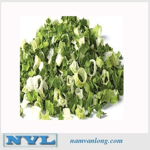 TOP QUALITY! OFFER FRESH/ DRIED SCALLION with high quality and best price